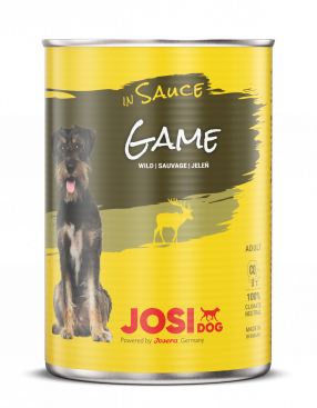 JOSIDOG GAME IN SAUCE